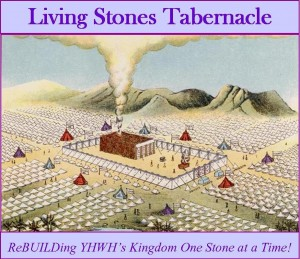 2015 LST LINK SQUARE Tabernacle