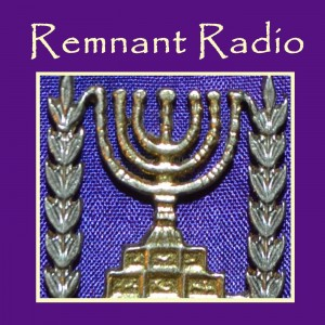 New_Logo_Remnant_Radio2014